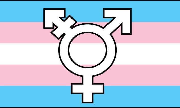 Bandera Transgenero